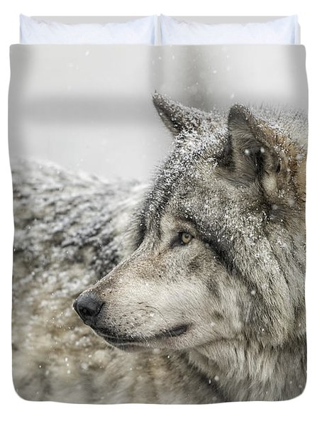 Timber Wolf Pictures 280 Duvet Cover