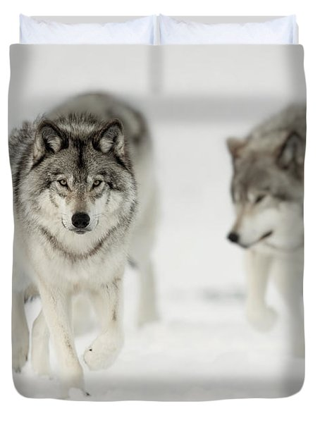 Timber Wolf Pictures 65 Duvet Cover