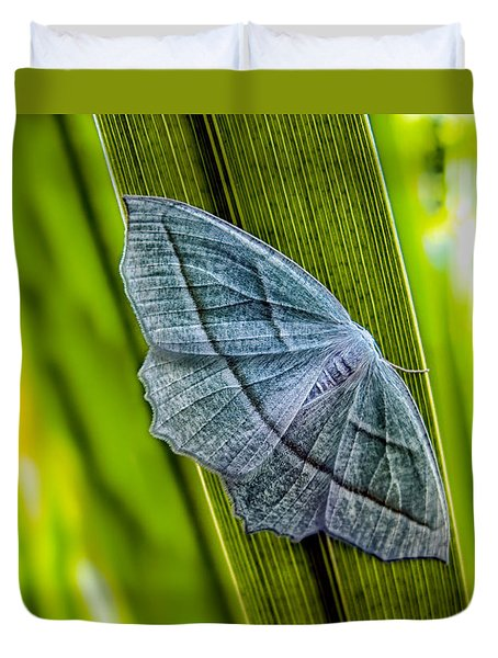 Tiny Moth On A Blade Of Grass Duvet Cover by Bob Orsillo