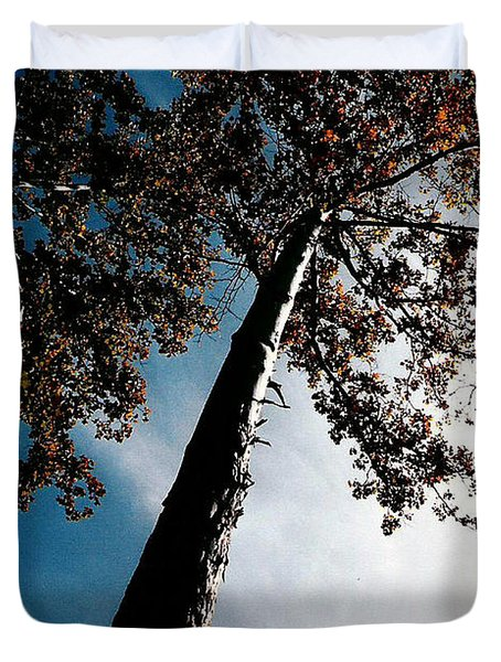 Duvet Cover featuring the photograph Tippy Top Tree Photo by Lesa Fine