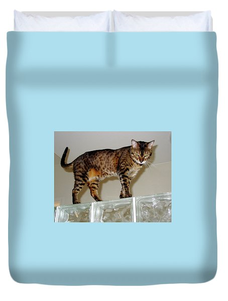 Duvet Cover featuring the photograph Tora On Glass II by Phyllis Kaltenbach