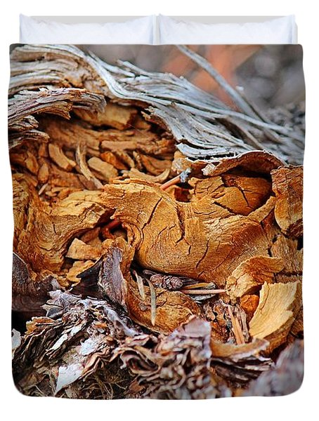 Duvet Cover featuring the photograph Torn Old Log by Ann E Robson