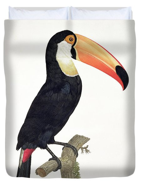 Toucan Duvet Cover by Jacques Barraband