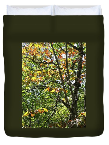 Touch Of Autumn Duvet Cover by Ann Horn