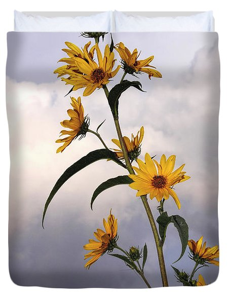 Towering Sunflowers Duvet Cover