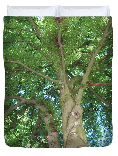 Duvet Cover featuring the photograph Towering Tree by Pema Hou