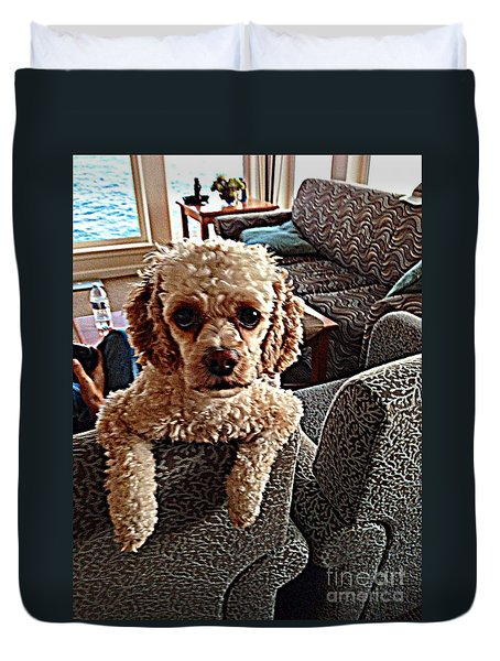 Toy Cockapoodle 1 Duvet Cover by Richard W Linford