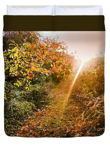 Fall Trail Duvet Cover