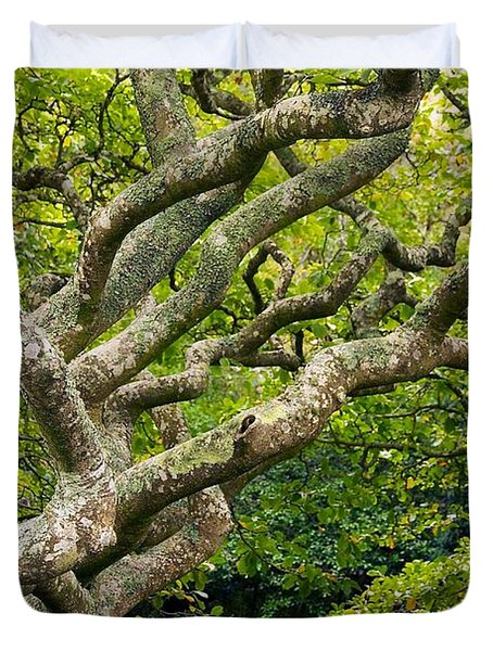 Tree #1 Duvet Cover