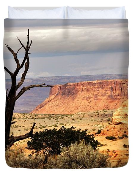 Tree And Mesa Duvet Cover by Marty Koch
