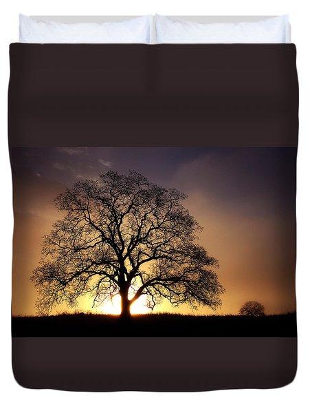 Tree At Sunrise In The Fog Duvet Cover