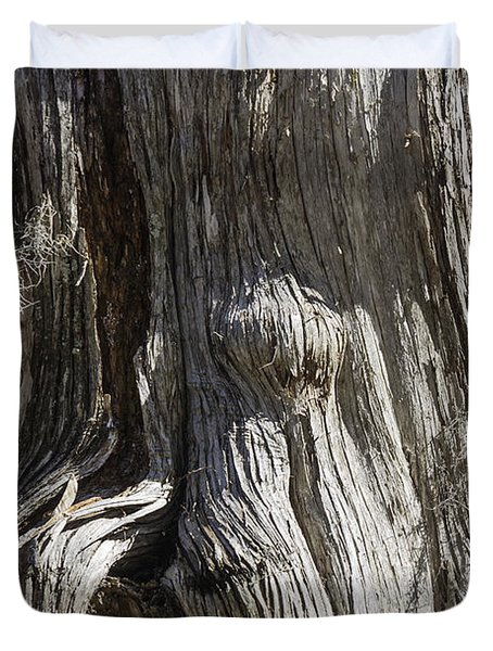 Tree Bark No. 3 Duvet Cover by Lynn Palmer