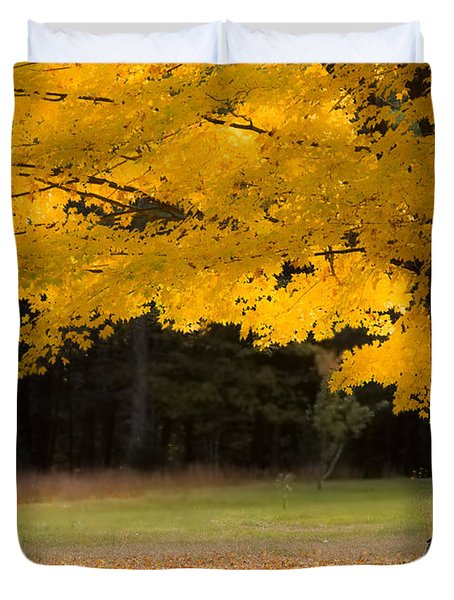 Tree Canopy Glowing In The Morning Sun Duvet Cover