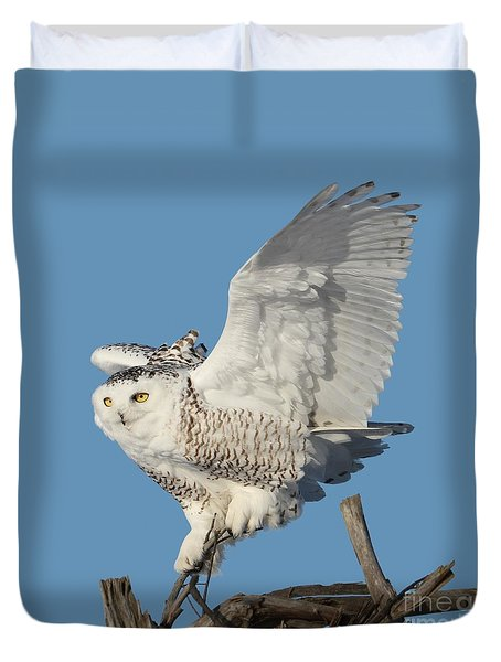 Tree Dancer Duvet Cover by Heather King