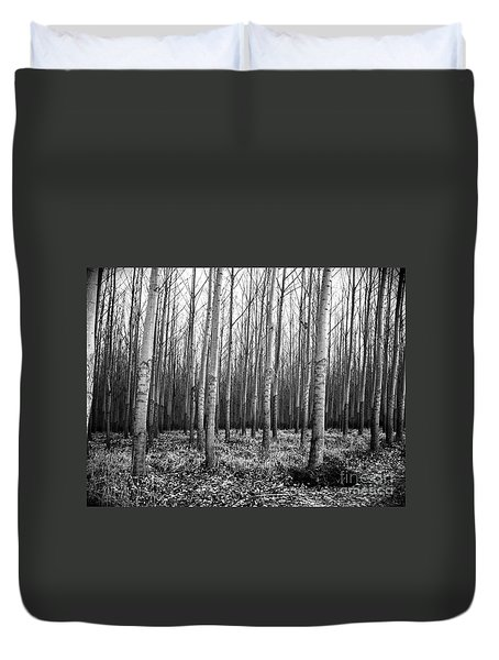 Tree Farm Duvet Cover by Chalet Roome-Rigdon