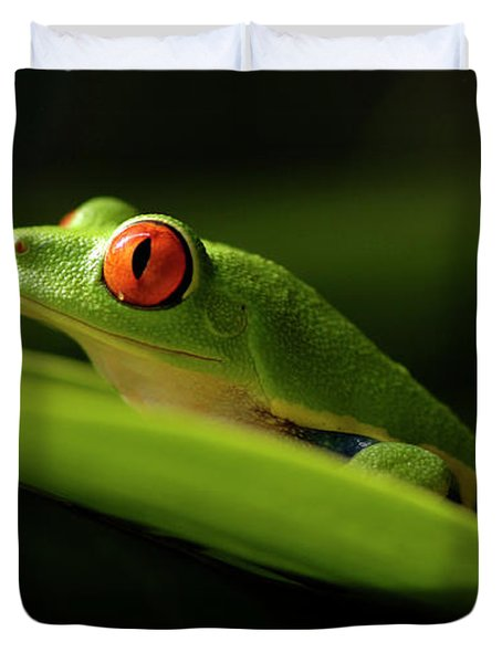 Tree Frog 7 Duvet Cover by Bob Christopher