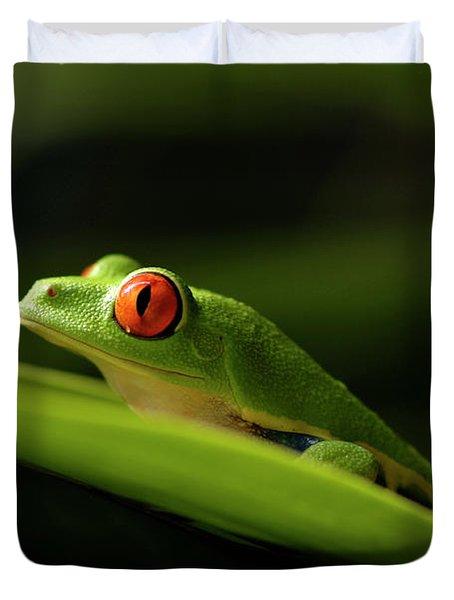 Tree Frog 8 Duvet Cover by Bob Christopher