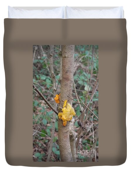 Tree Fungus Duvet Cover by John Williams