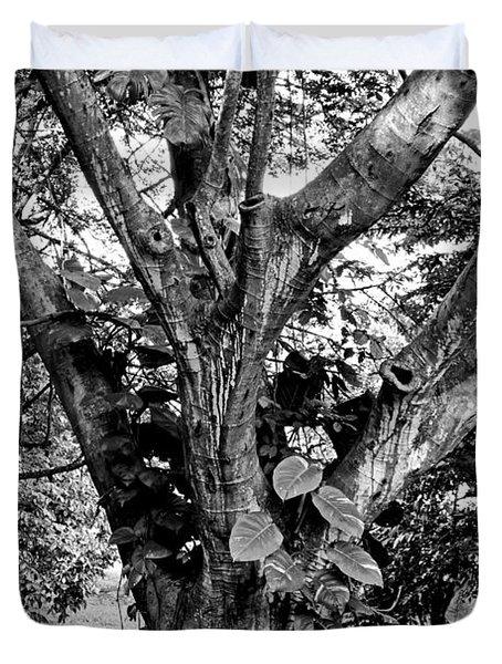 Tree Giant Duvet Cover