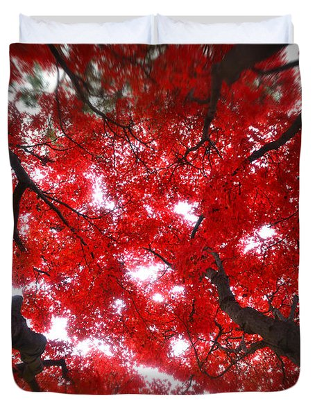 Duvet Cover featuring the photograph Tree Light - Maple Leaves Fall Autumn Red by Jon Holiday