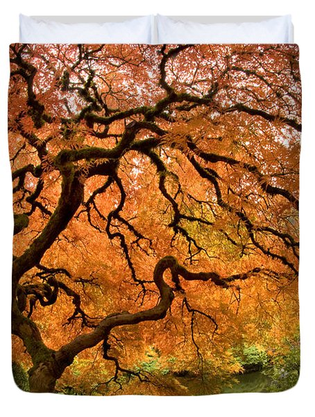 Tree Of Life Duvet Cover by Lori Grimmett