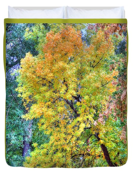 Duvet Cover featuring the photograph Tree On Fountain Creek by Lanita Williams