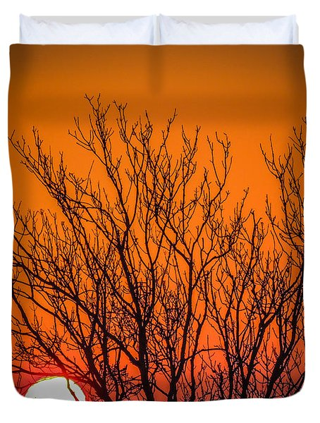 Tree Silhouetted By Irish Sunrise Duvet Cover