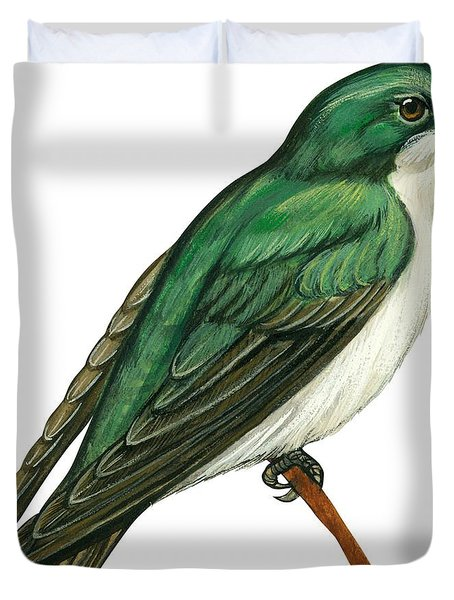 Tree Swallow  Duvet Cover by Anonymous