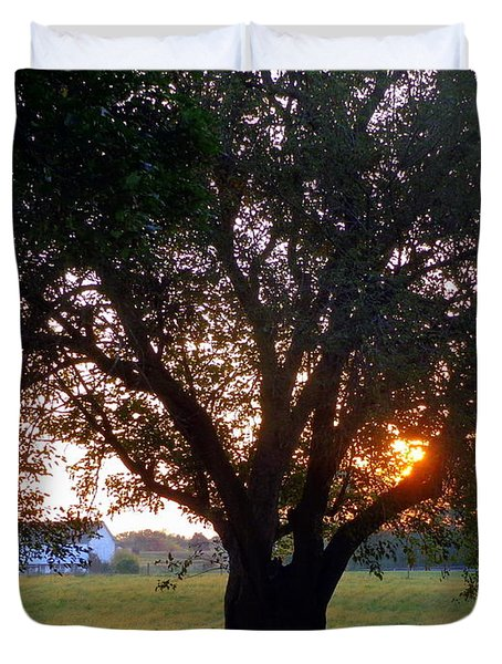 Tree With Fence. Duvet Cover
