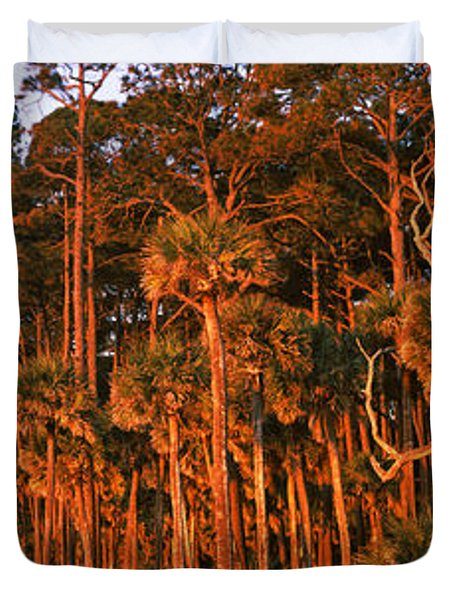 Trees, Hunting Island State Park Duvet Cover