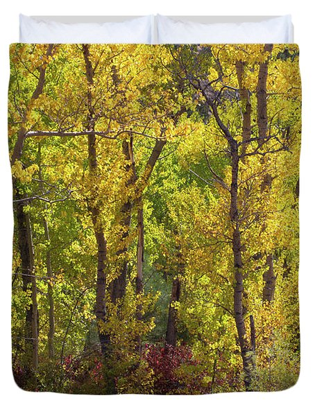 Trees In A Forest, Loop Falls, June Duvet Cover