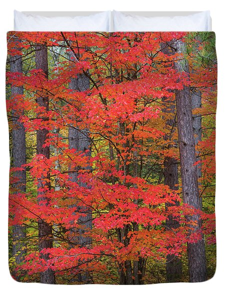 Trees In A Forest, Schoolcraft County Duvet Cover