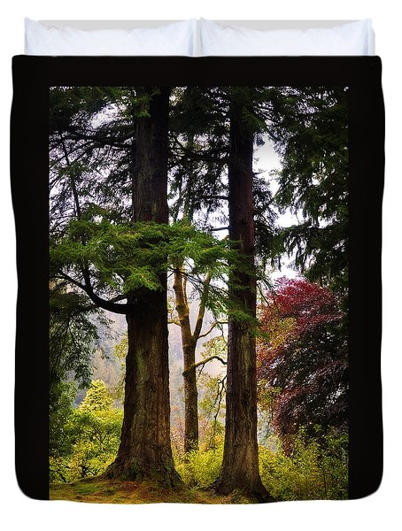 Trees In Autumn Glory. Scotland Duvet Cover by Jenny Rainbow