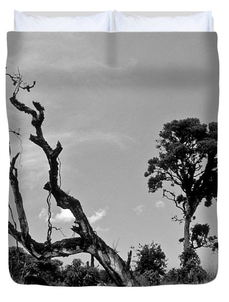 Duvet Cover featuring the photograph Trees In Cloud Forest by Lana Enderle
