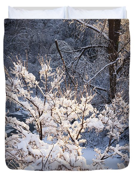 Trees In Forest After Winter Storm Duvet Cover