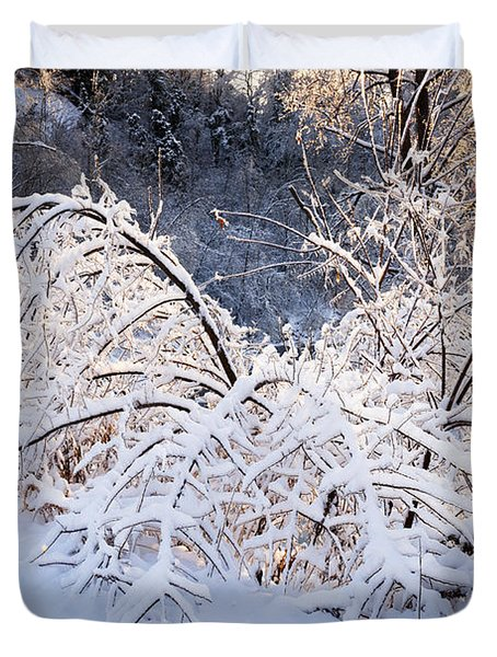 Trees In Snowy Forest After Winter Storm Duvet Cover