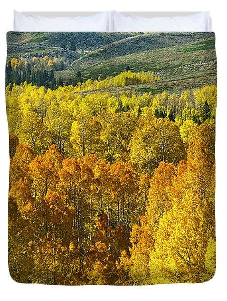Tri Color Aspen Duvet Cover