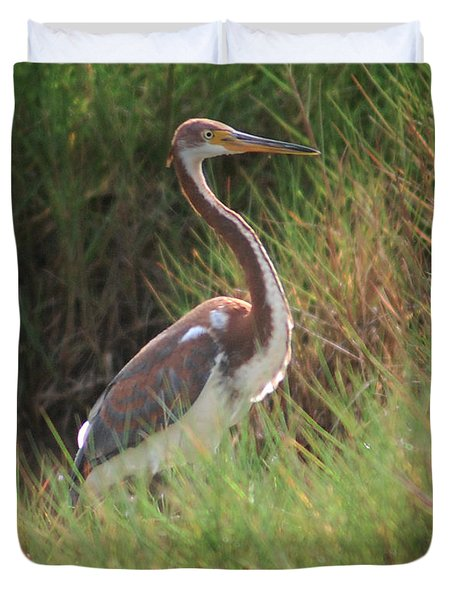 Duvet Cover featuring the photograph Tri-color Heron by Leticia Latocki