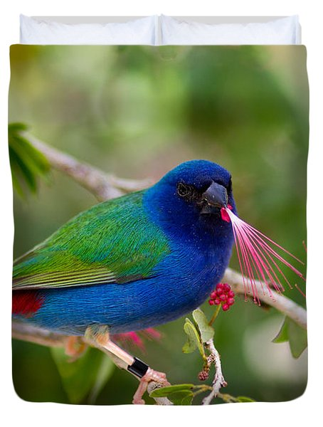 Duvet Cover featuring the photograph Tricolor Parrot Finch by Les Palenik