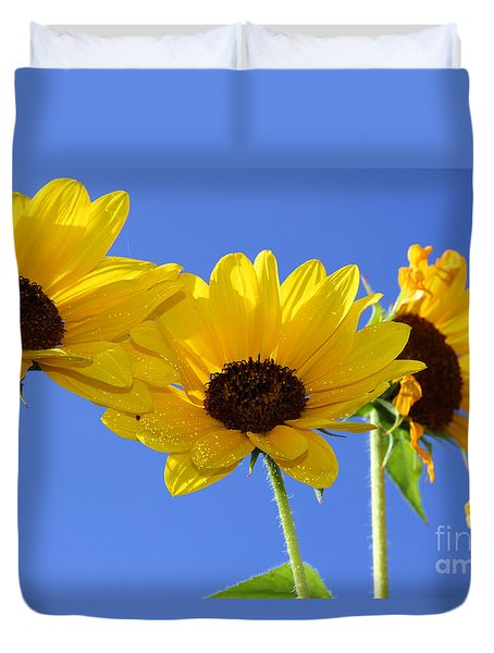 Trio In The Sun - Yellow Daisies By Diana Sainz Duvet Cover
