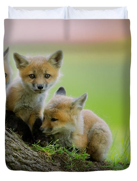 Trio Of Fox Kits Duvet Cover by Everet Regal