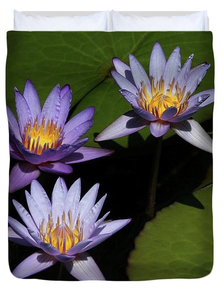Trio Of Purple Water Lilies Duvet Cover by Sabrina L Ryan