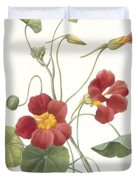 Tropaeolum Majus Garden Nasturtium Duvet Cover