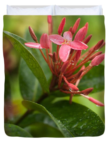 Tropical Flowers In Singapore Duvet Cover