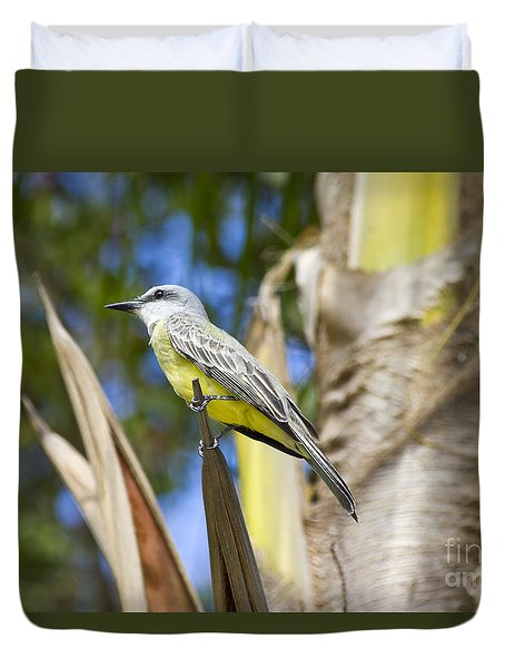 Duvet Cover featuring the photograph Tropical Kingbird by Teresa Zieba