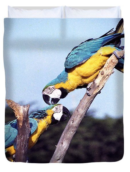 Tropical Parrots In Love Duvet Cover