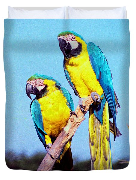 Tropical Parrots In San Francisco Duvet Cover