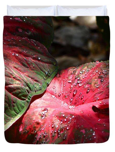 Tropical Rain - Botanical Art By Sharon Cummings Duvet Cover