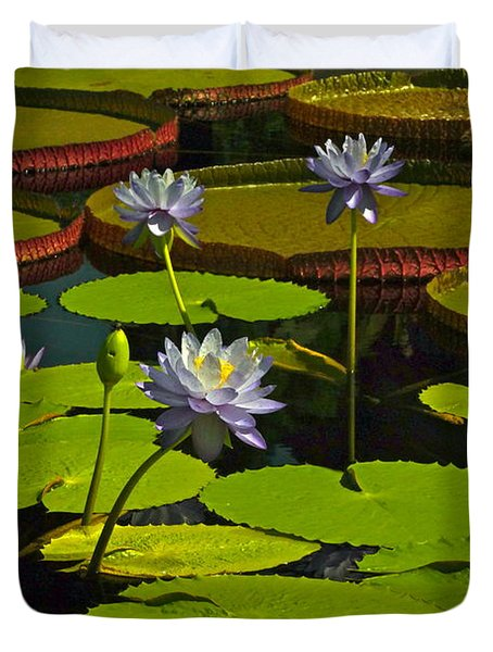 Tropical Water Lily Flowers And Pads Duvet Cover by Byron Varvarigos