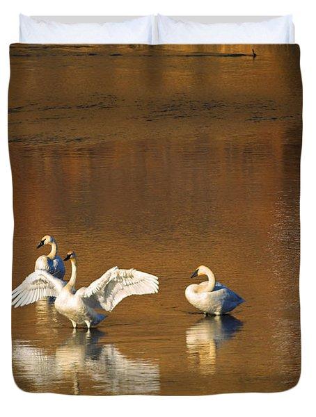 Trumpeter Ballet Duvet Cover